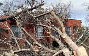 Florida Hurricane Damage Property Claim Lawyer - Louis Law Group