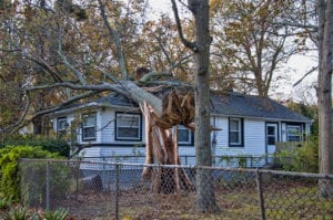 Florida Wind Damage Property Claim Lawyer 3- Louis Law Group