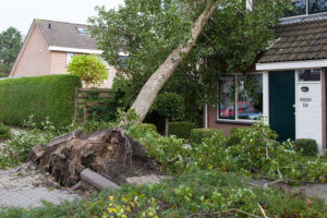 Hurricane Damage Lawyer Florida